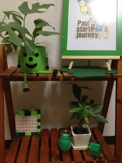 100均の観葉植物を緑に統一してディスプレイ
