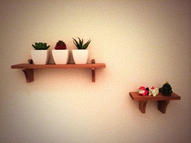 壁に観葉植物をディスプレイ