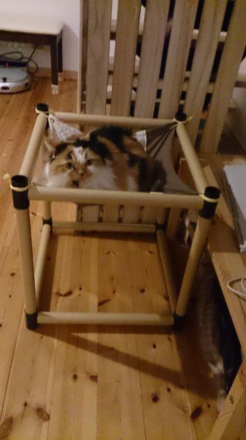 100均で作った猫用ハンモック